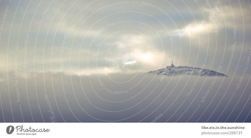 wolkenmeer Umwelt Natur Landschaft Urelemente Wolken Horizont Winter Wetter Eis Frost Schnee Alpen Berge u. Gebirge Gipfel Schneebedeckte Gipfel natürlich