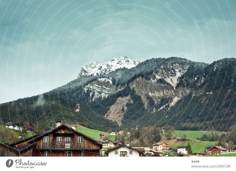 Südtirol Himmel Natur Ferien & Urlaub & Reisen Sommer Haus Wald Umwelt Landschaft Wiese Berge u. Gebirge Klima authentisch Häusliches Leben Urelemente Idylle Alpen