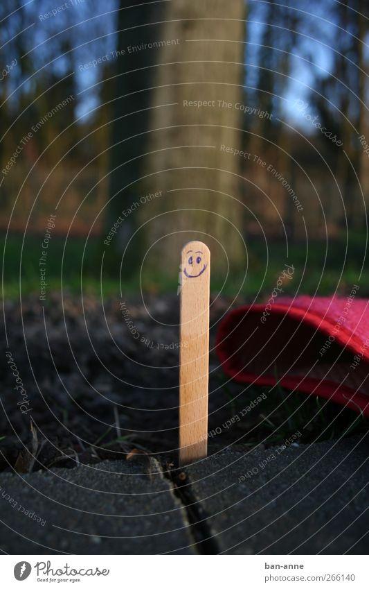 Bitte lächeln! blau Freude Leben Holz lachen Lebensmittel braun Stimmung Zufriedenheit Fröhlichkeit verrückt Kreativität genießen Lächeln Lebensfreude Beton