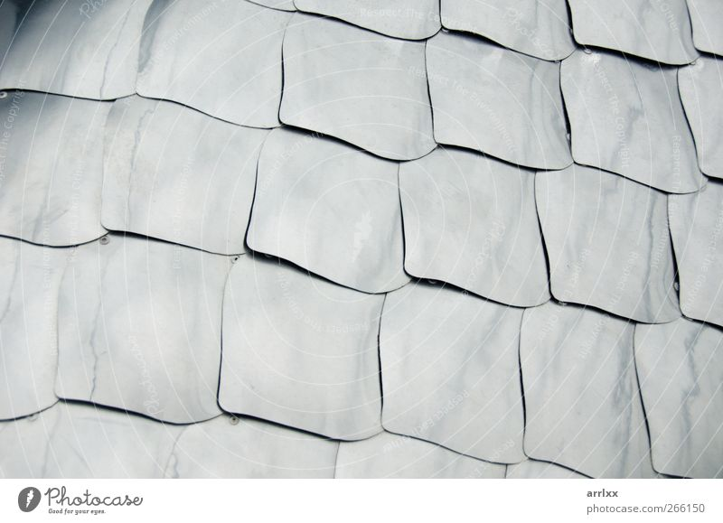 Silberschuppen / Silberne Metallplatte Hintergrund Kunst Skulptur Mauer Wand Dekoration & Verzierung Stahl ästhetisch Coolness Kraft Schuppen Platten Struktur