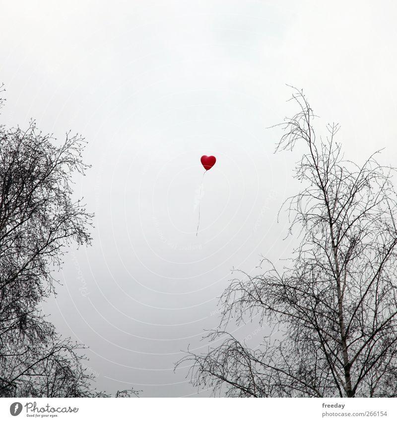 Luft & Liebe schön Baum rot Einsamkeit Wiese Leben Gefühle Traurigkeit Garten träumen Park Feld fliegen Herz Luftballon