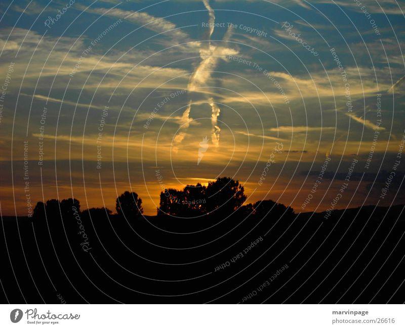 X Himmel Sonnenuntergang Baum Warmes Licht Ebene