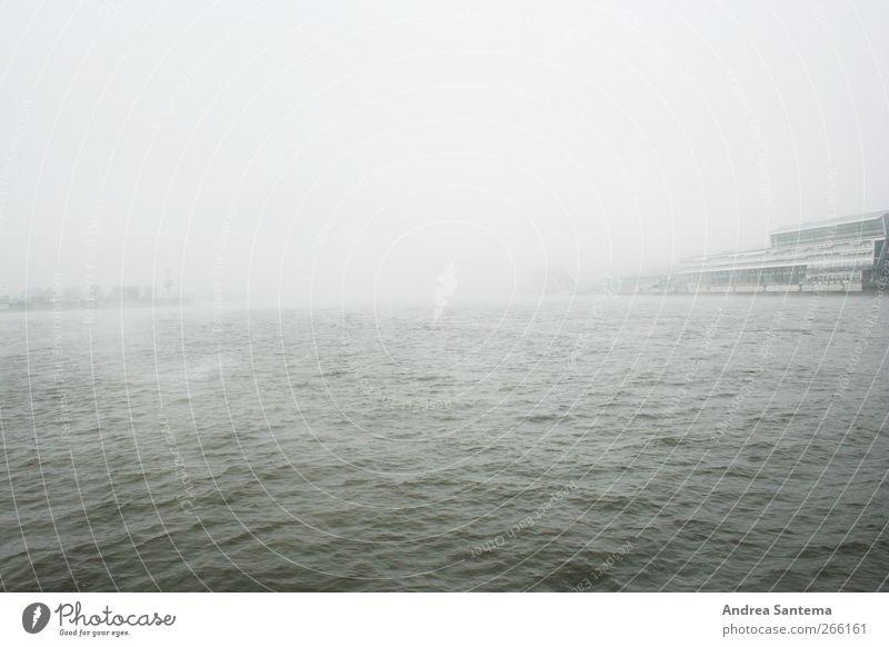 Hamburg Hafen Wasser Horizont schlechtes Wetter Wind Nebel Regen Wellen Meer Unendlichkeit gruselig Traurigkeit Sehnsucht Heimweh Fernweh Einsamkeit