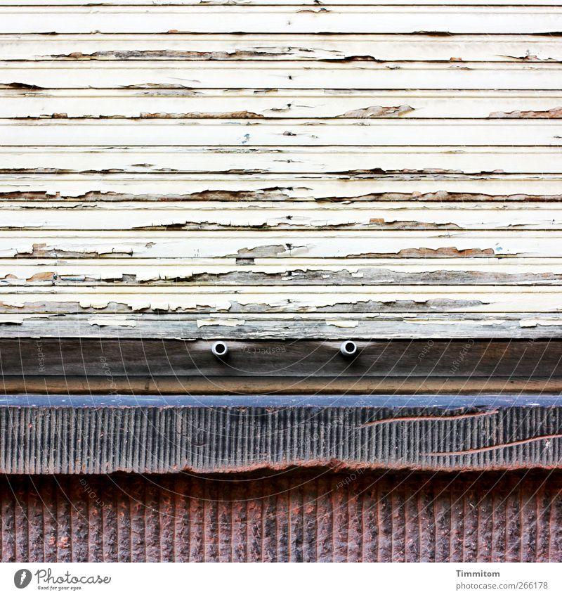 Karl fühlt sich beobachtet. weiß Stadt Haus Fenster Wand Gefühle Holz grau Stein Mauer warten authentisch bedrohlich beobachten einfach Heidelberg