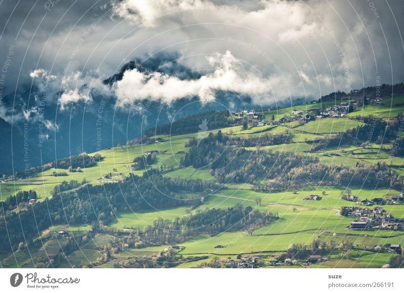 Ins Tal schau' Sommer Berge u. Gebirge Umwelt Natur Landschaft Urelemente Himmel Wolken Klima Schönes Wetter Baum Wiese Wald Alpen außergewöhnlich schön grün
