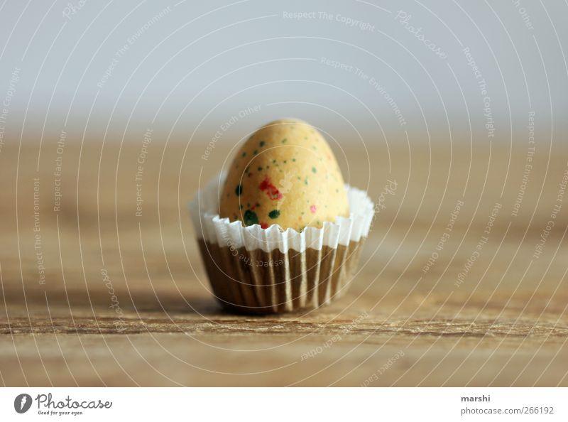 Vogeleipraline Deluxe Lebensmittel Ernährung braun gelb Ei Konfekt Holztisch Vogeleier Detailaufnahme Süßwaren Farbfoto Innenaufnahme