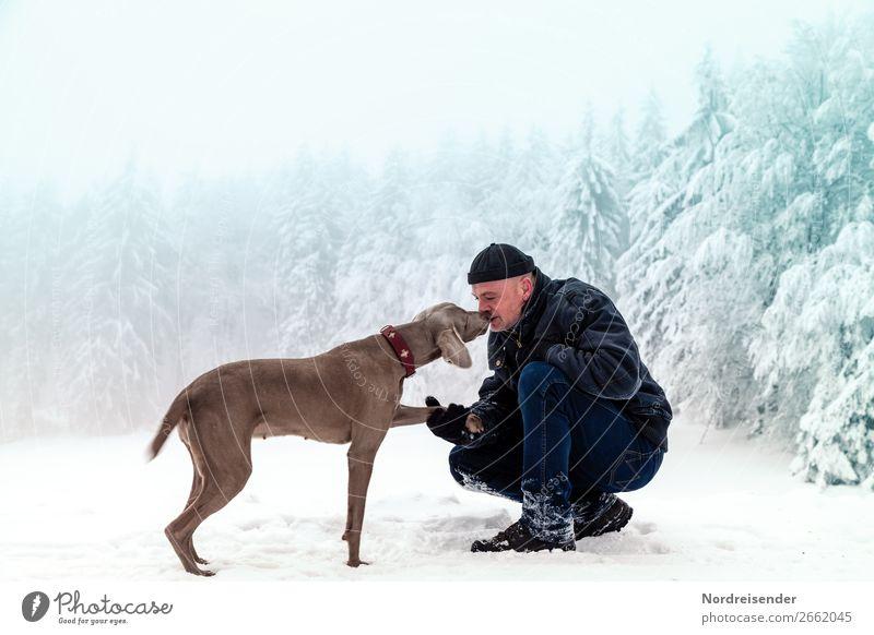 Unterwegs im Winterwald Mensch Hund Mann Weihnachten & Advent Erholung Tier Freude Wald Erwachsene Schnee Glück Freiheit Ausflug wandern maskulin