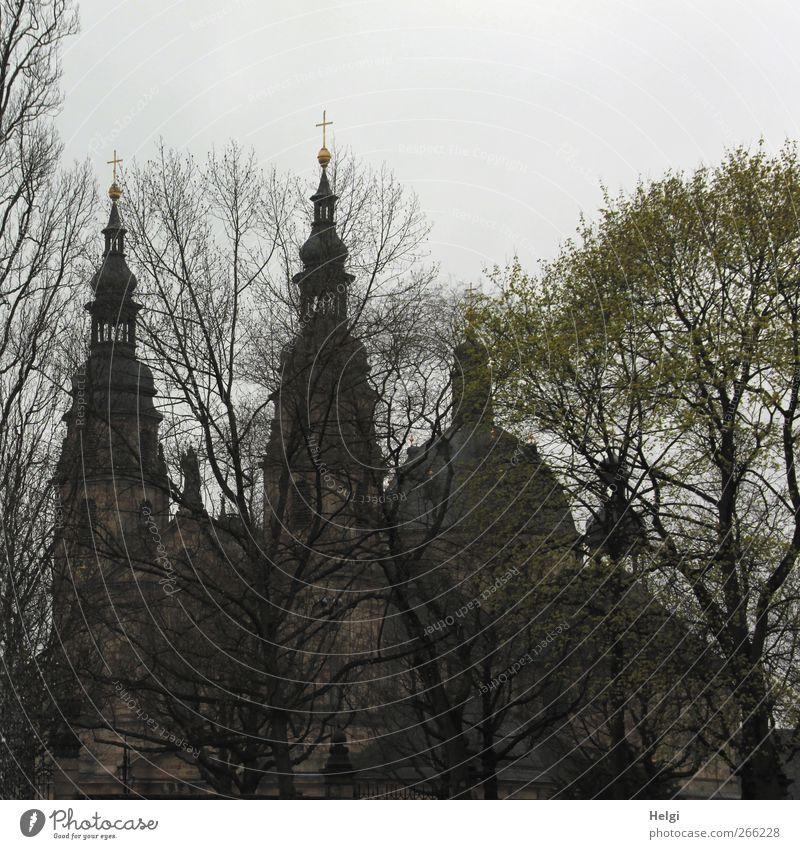 hinter Bäumen versteckt... Architektur Kultur Pflanze Himmel Wolken Baum Park Landkreis Fulda Stadt Kirche Dom Bauwerk Gebäude Kirchturm Kirchturmspitze