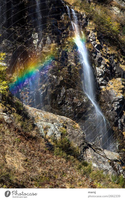 Die Natur kann doch die besten Farbspiele Herbst Regenbogen Wasserfall nass natürlich mehrfarbig fließen Lichterscheinung Lichtbrechung Erscheinung Erfrischung