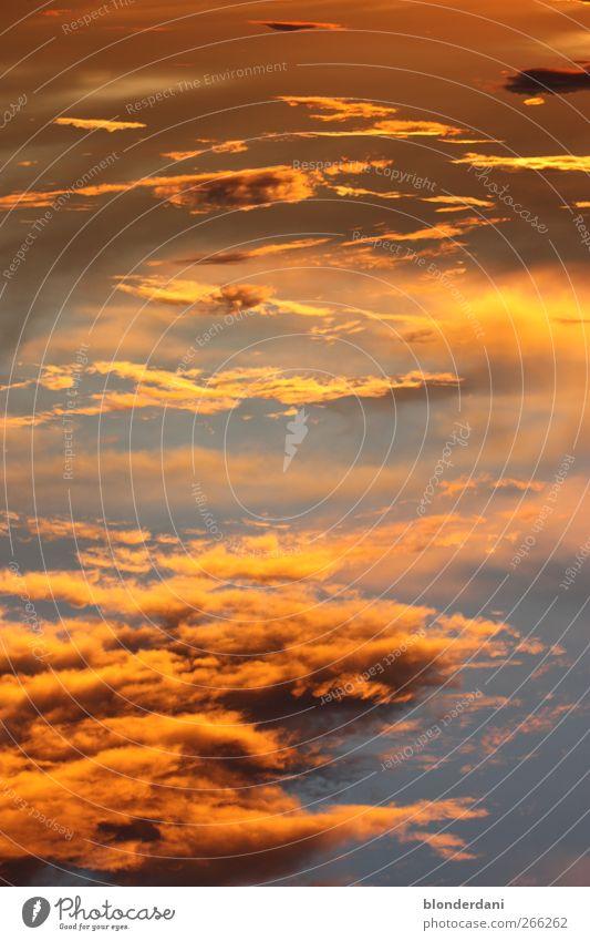 """""""Himmelsleiter"""" Himmel blau schön Sonne Wolken ruhig Ferne gelb Zufriedenheit Glaube Leiter Abenddämmerung Tansania"""