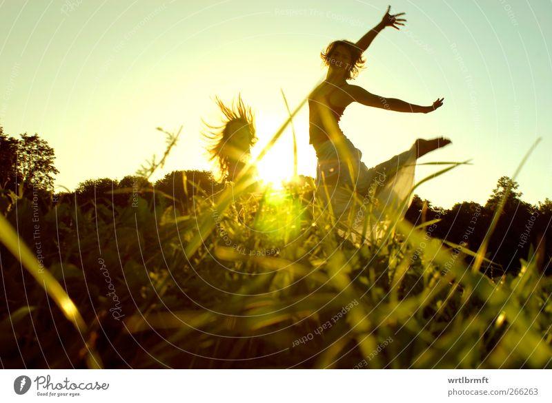 Endlich Sommer Freude Freiheit Tanzen feminin Junge Frau Jugendliche 2 Mensch Gras Park Wiese Bewegung lachen springen Gesundheit Freundlichkeit Fröhlichkeit