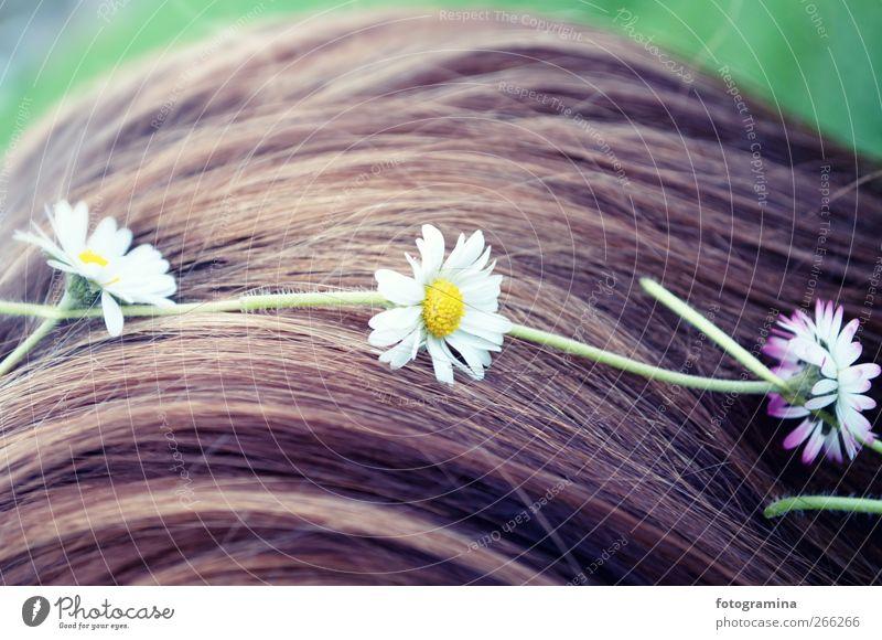 Blumenmädchen Natur Jugendliche schön Pflanze Mädchen Haare & Frisuren Glück Stil Junge Frau Lifestyle violett genießen Frühlingsgefühle