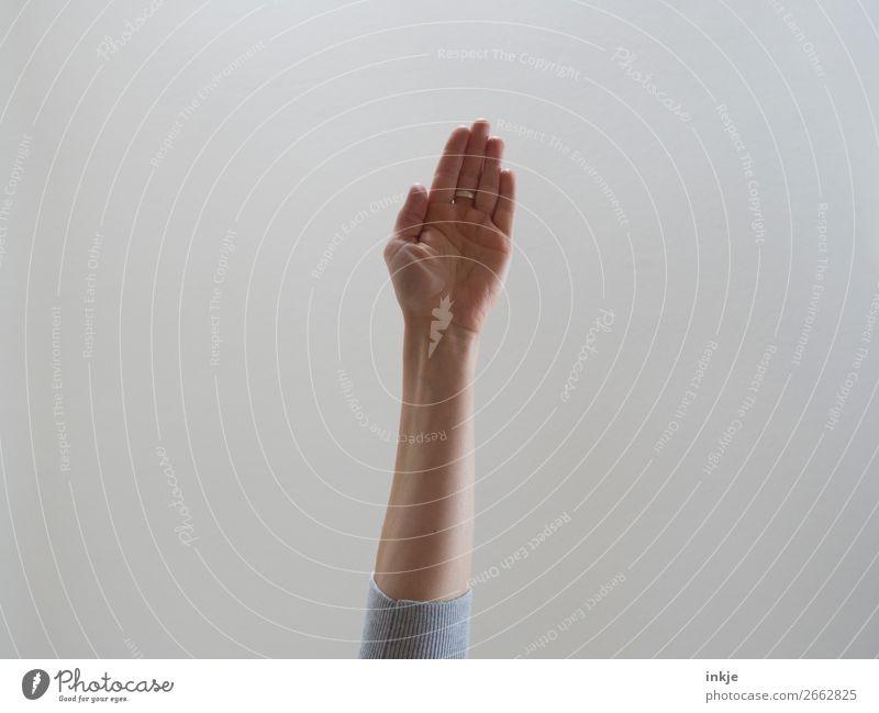 Trash   Handfläche Arme 1 Mensch machen authentisch einfach Kommunizieren gestikulieren flach ausgestreckt Farbfoto Gedeckte Farben Innenaufnahme Studioaufnahme