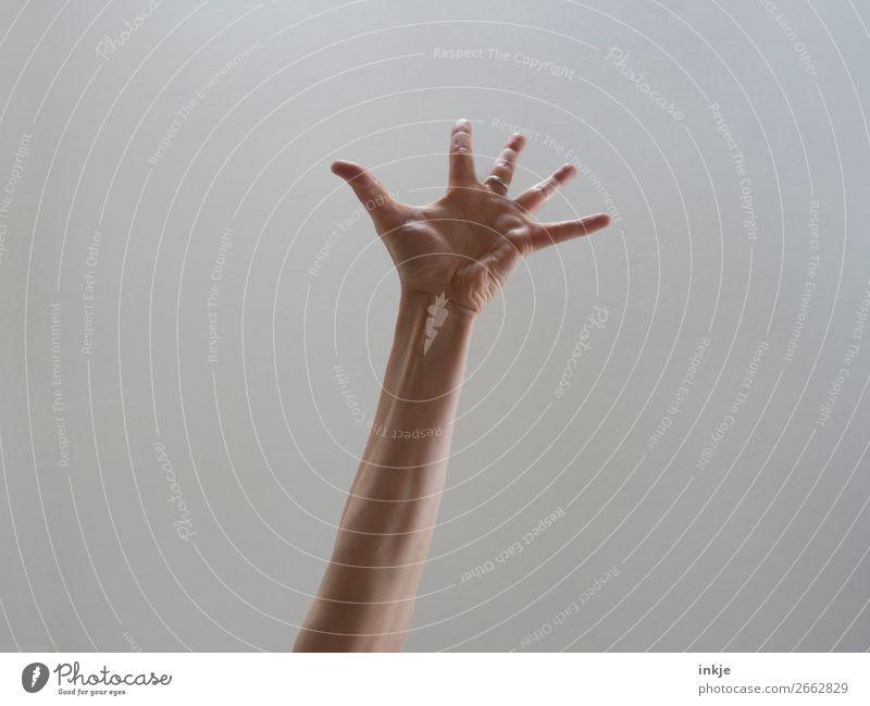 Überraschung ! Lifestyle Freude Leben Arme Hand Finger authentisch Vor hellem Hintergrund Handfläche gestikulieren strecken Applaus Kaukasier dünn Farbfoto