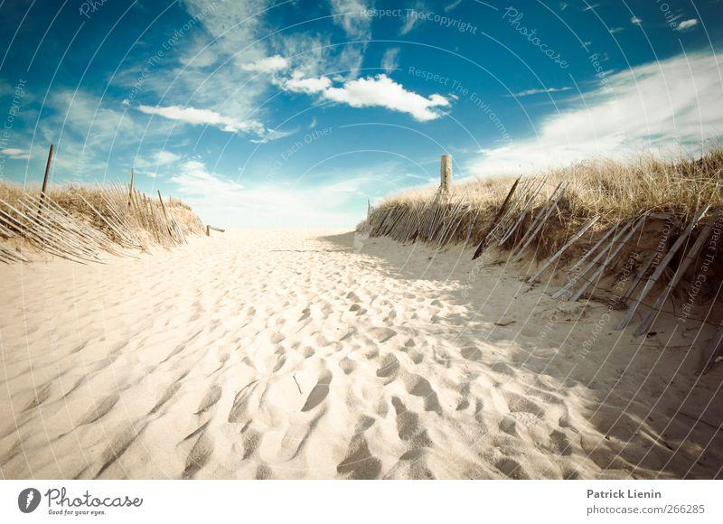 East Beach Natur Ferien & Urlaub & Reisen Sonne Meer Sommer Strand ruhig Ferne Erholung Umwelt Landschaft Küste Freiheit Sand Stimmung Erde