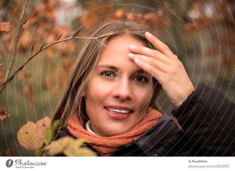 hübsche Frau mit Hand auf der Stirn, Herbstlaub Mensch Pflanze schön Blatt Freude Wald Gesicht Erwachsene natürlich Bewegung Glück orange Zufriedenheit