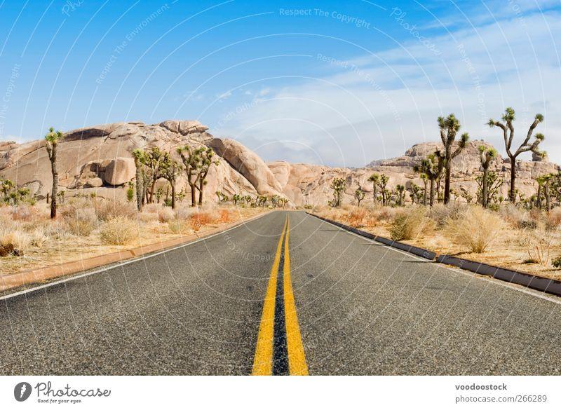 eine Straße durch den Joshua-Baum-Nationalpark Ausflug Abenteuer Sommer Berge u. Gebirge Natur Landschaft Wolken Sonne Wüste Autobahn Linie Stein Horizont