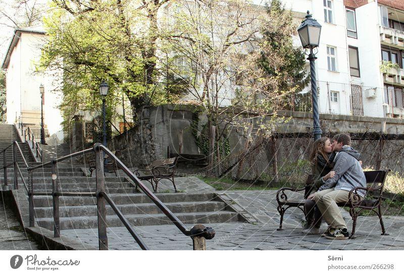 someone to hold. Glück harmonisch Sinnesorgane Bank Valentinstag Paar Partner Jugendliche 2 Mensch 18-30 Jahre Erwachsene Park Budapest berühren festhalten