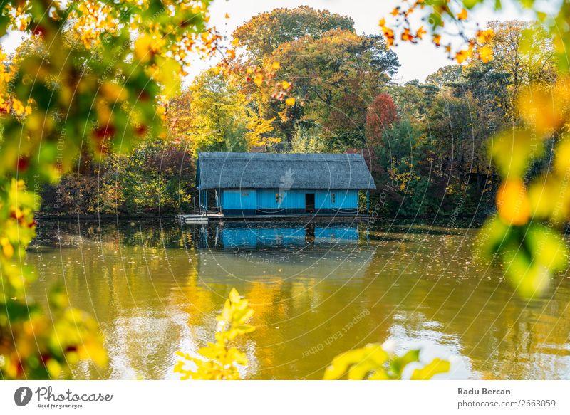 Ferien & Urlaub & Reisen Natur Pflanze blau Farbe schön grün Wasser Landschaft rot Baum Haus Blatt Wald Herbst gelb