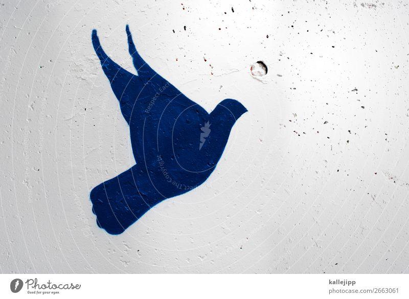 feliz navidad Weihnachten & Advent Tier Graffiti Vogel fliegen Freundschaft frei Kirche Geburtstag Fröhlichkeit Zeichen Freundlichkeit Hochzeit Ostern Postkarte