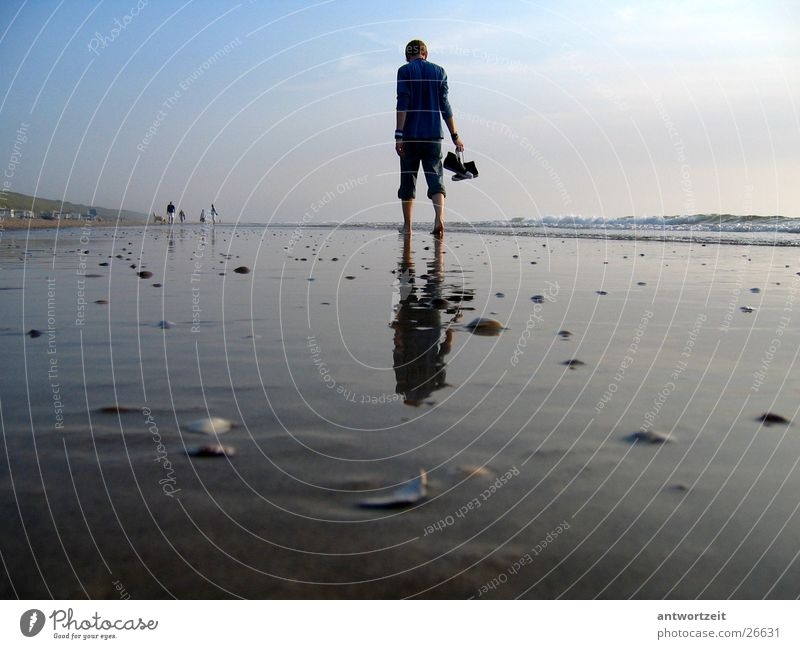 Walkin' down the beach Niederlande Strand Mann Brandung Muschel Einsamkeit Denken Chucks Sand Himmel