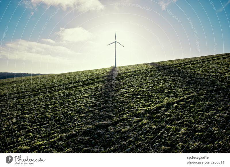 Hoffnung im Querformat Himmel Pflanze Sonne Sommer Landschaft Herbst Frühling Feld Schönes Wetter Windkraftanlage Ackerbau Umweltschutz nachhaltig Fortschritt Nutzpflanze