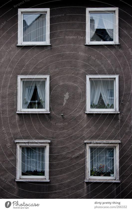 Nachbarn Stadt Menschenleer Haus Architektur Fassade Fenster Fensterbrett Stein Beton trist braun weiß Einsamkeit Zufriedenheit Häusliches Leben Häuserzeile