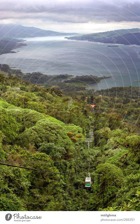 Arenalsee, Costa Rica Urwald tropisch Wald Straßenbahn Gondellift Sesselbahn See arenal Nebelwald Mittelamerika Karibik üppig (Wuchs) Äquator geschlossen