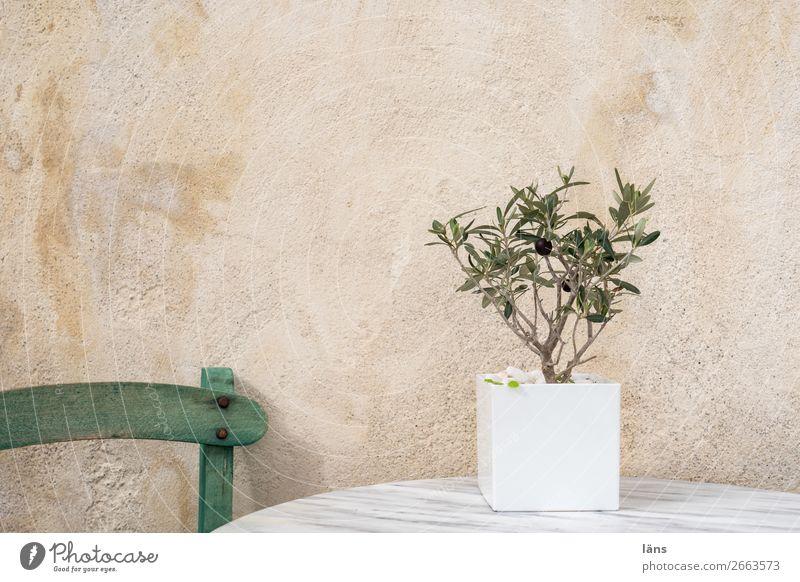 Platzhalter Ferien & Urlaub & Reisen Sommer Wand Mauer Tisch einzigartig Stuhl Terrasse