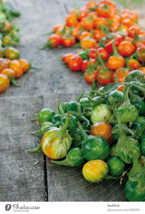 Afrikanische Auberginen Lebensmittel Gemüse Ernährung Bioprodukte Vegetarische Ernährung Diät exotisch Gesundheit Gesunde Ernährung Ferne Natur Pflanze Sommer