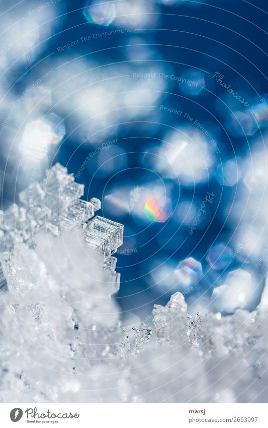 Kristall mit bunten Reflexionen Eis Frost Eiskristall Kristalle leuchten außergewöhnlich blau regenbogenfarben einzigartig Vergänglichkeit bezaubernd Traumwelt