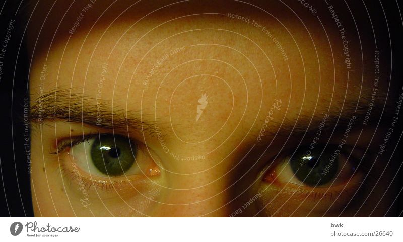 Green Eyes Mann grün Auge Kontaktlinse