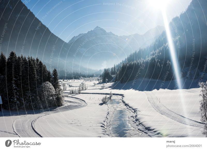 Tettermoor im Winter Ferien & Urlaub & Reisen Tourismus Ausflug Sonne Schnee Winterurlaub Natur Landschaft Schönes Wetter Eis Frost Alpen Schlucht Untertal Bach