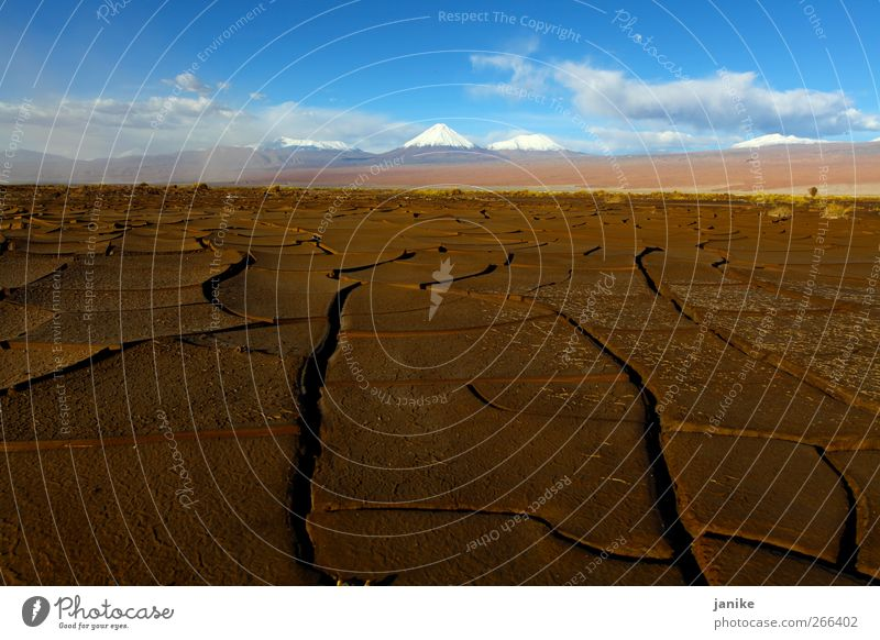 Dessert and Snow Himmel Sommer Winter Wolken Ferne Landschaft Schnee Berge u. Gebirge Horizont Erde Urelemente Wüste Schönes Wetter Chile Südamerika Schneebedeckte Gipfel