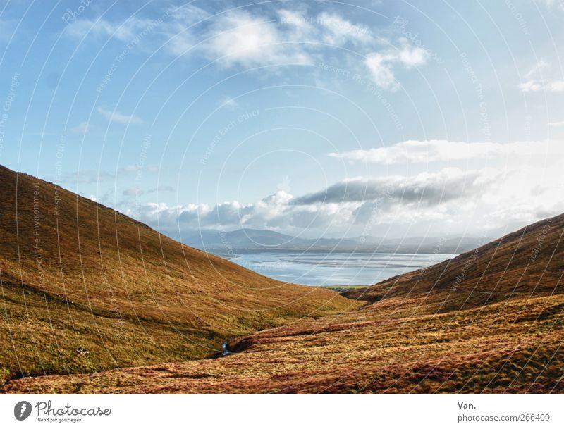 Da hinten, das Meer! Ferien & Urlaub & Reisen Natur Landschaft Pflanze Erde Luft Wasser Himmel Wolken Herbst Gras Moos Wiese Hügel Atlantik Bach Republik Irland