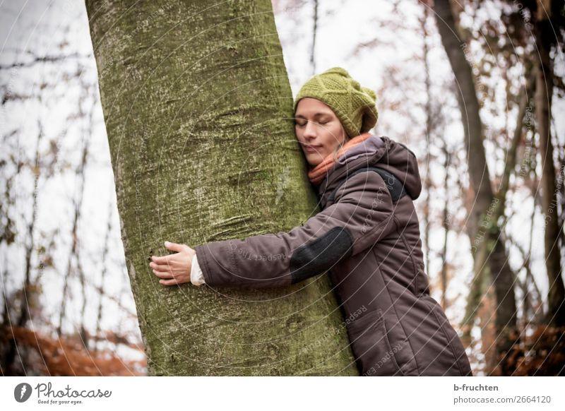 Träumen in der Natur Frau Mensch Baum Erholung ruhig Wald Gesicht Erwachsene Herbst wandern Park träumen Kraft Arme Energie