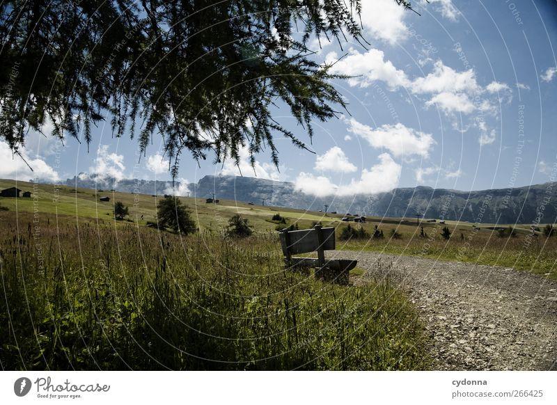 Verweilen Himmel Natur Baum Ferien & Urlaub & Reisen Sommer Einsamkeit ruhig Ferne Erholung Umwelt Landschaft Wiese Leben Berge u. Gebirge Freiheit Wege & Pfade