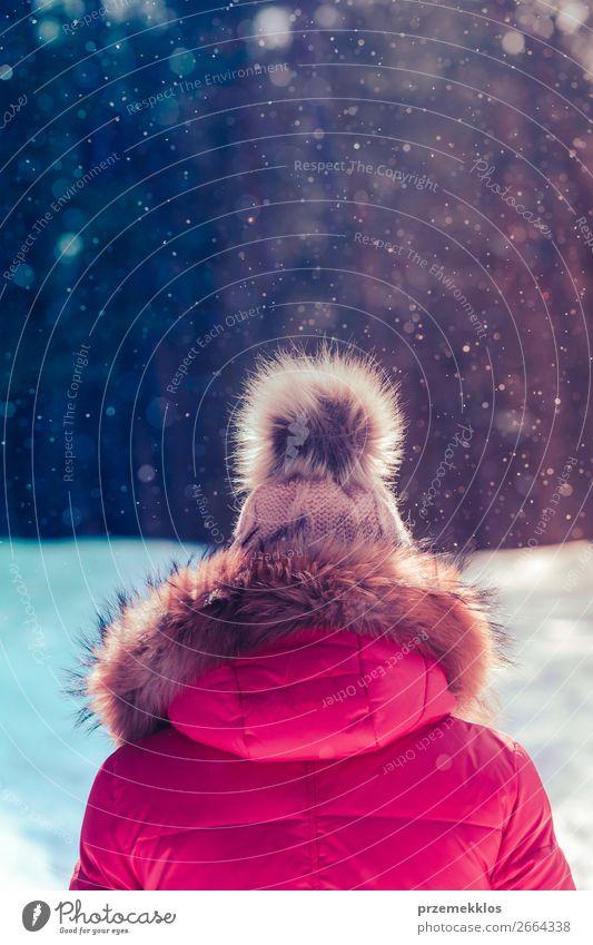 Frau Mensch Natur weiß Freude Wald Winter Lifestyle Erwachsene Schnee Glück Zusammensein Schneefall Park Aktion genießen
