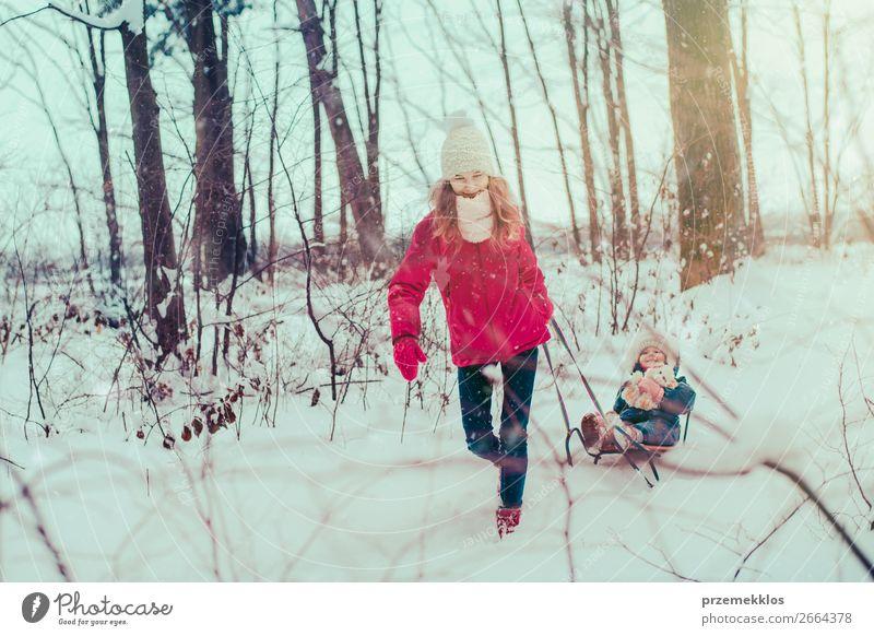 Kind Mensch Natur Jugendliche Junge Frau weiß Baum Erholung Freude Wald Winter Mädchen Lifestyle Schnee Familie & Verwandtschaft Glück