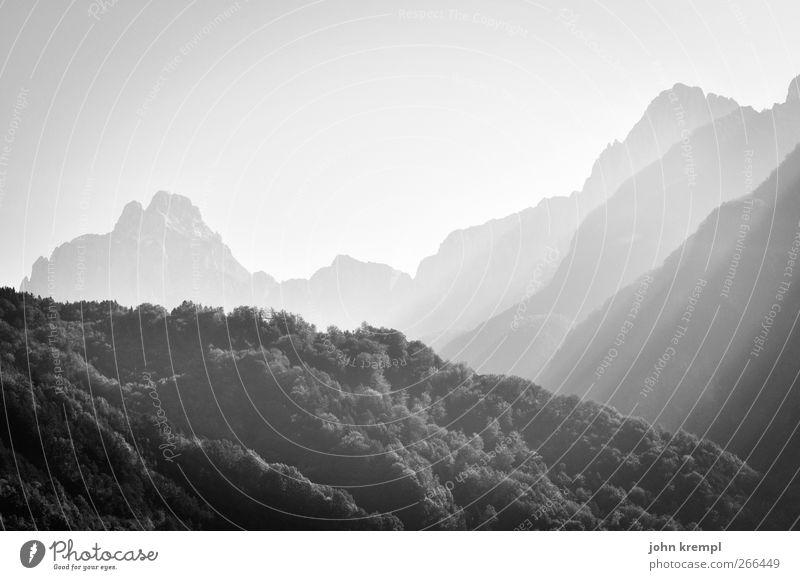 erhaben Umwelt Wald Hügel Alpen Berge u. Gebirge Gipfel karnische alpen leuchten ästhetisch bedrohlich gigantisch hoch Optimismus Kraft Macht Mut Tatkraft ruhig