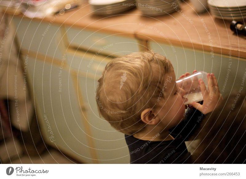Durstlöschung Bioprodukte Getränk trinken Erfrischungsgetränk Milch Tasse Glas Gesunde Ernährung Küche Kindergarten Mensch maskulin Kleinkind Kindheit Hand 1