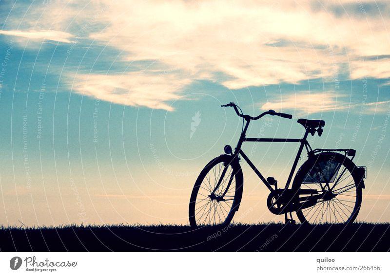 Freiheit Himmel blau weiß Ferien & Urlaub & Reisen Sommer Strand Wolken schwarz ruhig Landschaft Wege & Pfade Bewegung Luft Horizont Gesundheit Zufriedenheit