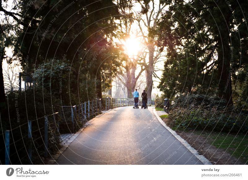 Abendspaziergang Mensch Frau Jugendliche Baum Erwachsene Leben Wege & Pfade Paar Freundschaft Park laufen 18-30 Jahre Mutter Ziel Idylle Partner