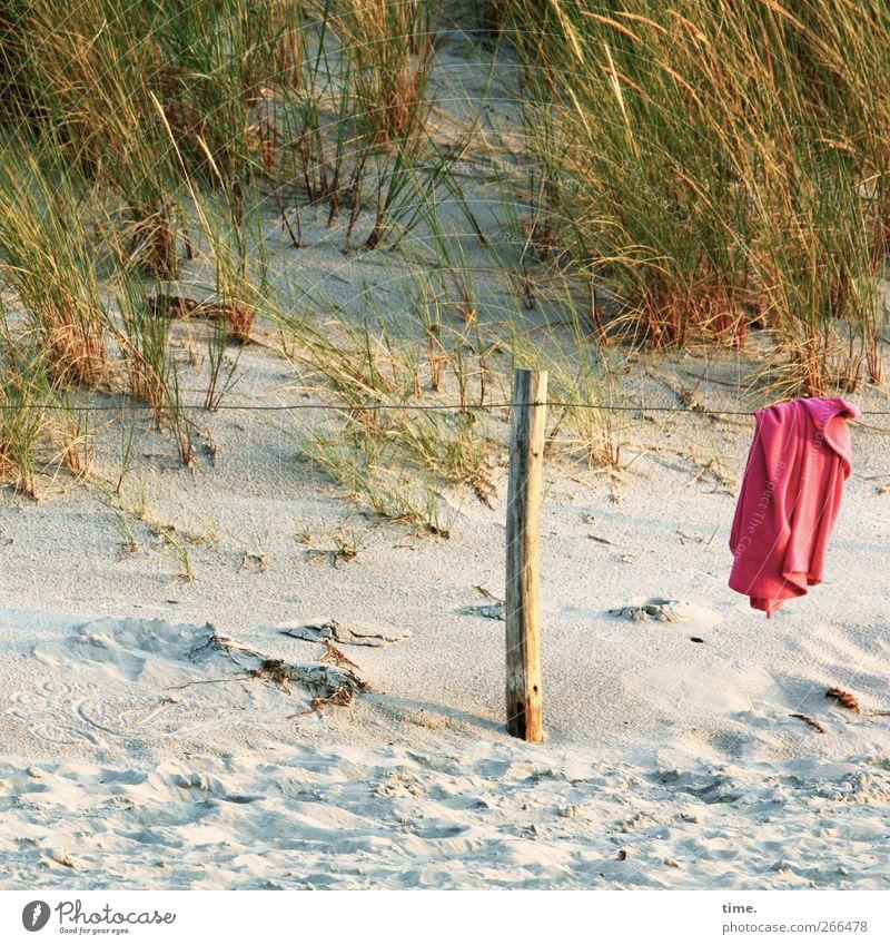 herrenloses Textil Pflanze Strand Umwelt Tourismus T-Shirt Schönes Wetter Stranddüne Ostsee Hemd hängen Textilien Pfosten Drahtseil Dünengras