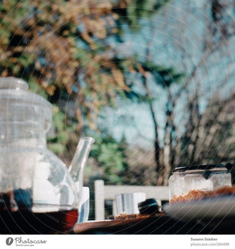 Omas Apfelkuchen Lebensmittel Ernährung Picknick Getränk Heißgetränk Tee Duft Teekanne Tisch Teesieb Schwarzer Tee Farbfoto Außenaufnahme Nahaufnahme