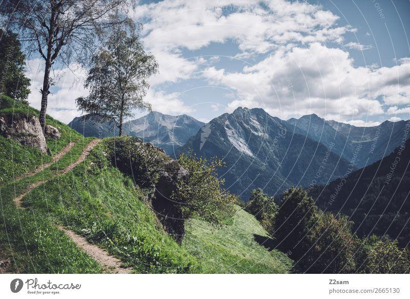 Bergpanorama in Südtirol Berge u. Gebirge wandern Natur Landschaft Himmel Wolken Sommer Schönes Wetter Baum Alpen Gipfel natürlich blau grün Idylle nachhaltig