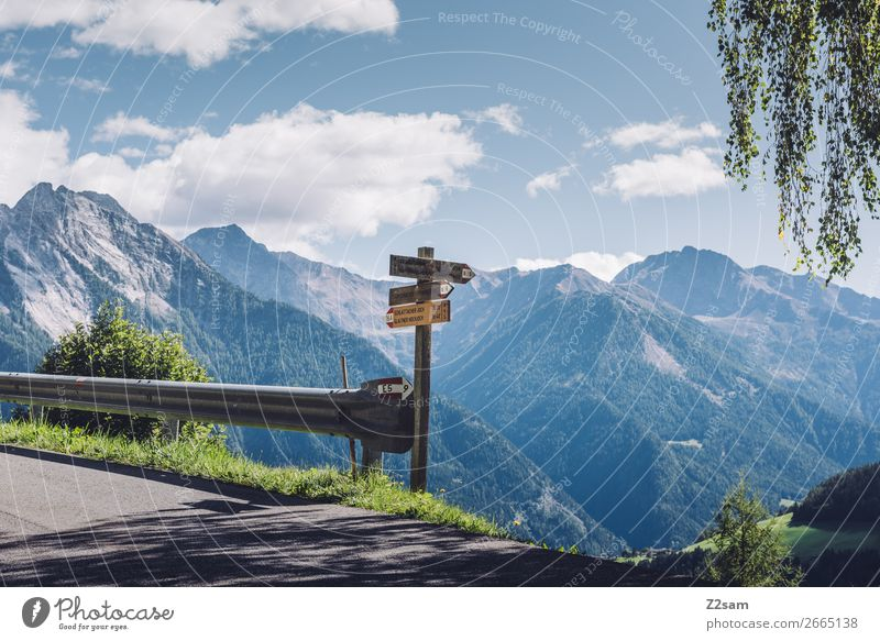 Wanderschilder auf dem E5 Fernwanderweg wandern Klettern Bergsteigen Natur Landschaft Schönes Wetter Alpen Berge u. Gebirge Straße Wege & Pfade Wegkreuzung hoch