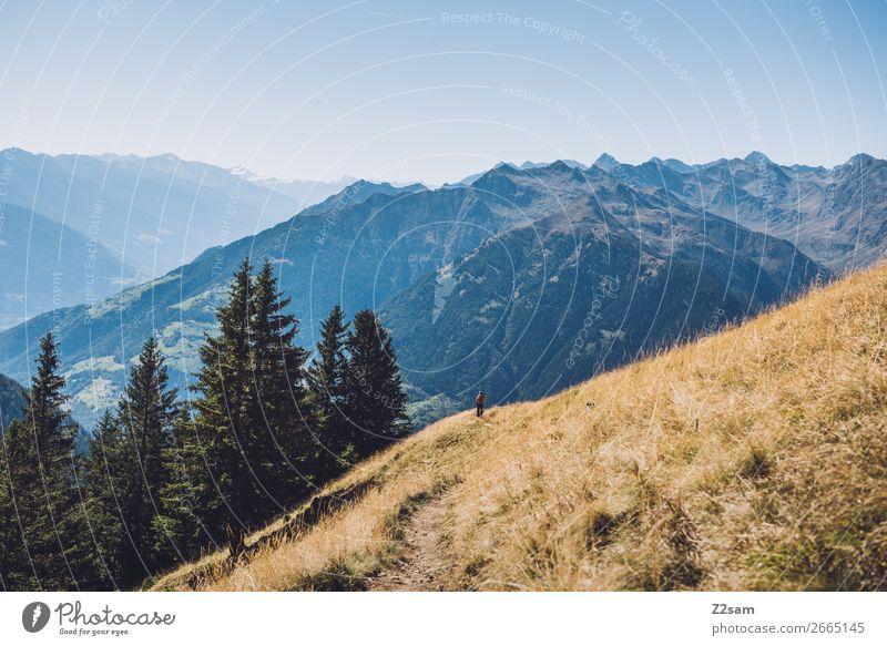 Bergpanorama in Südtirol wandern Umwelt Natur Landschaft Wolkenloser Himmel Sommer Schönes Wetter Alpen Berge u. Gebirge hoch natürlich blau Einsamkeit Erholung