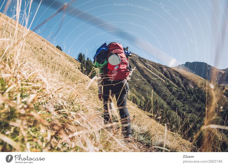 Junge Frau auf dem E5 Fernwanderweg Richtung Hirzer Freizeit & Hobby Ferien & Urlaub & Reisen wandern Klettern Bergsteigen Jugendliche 18-30 Jahre Erwachsene