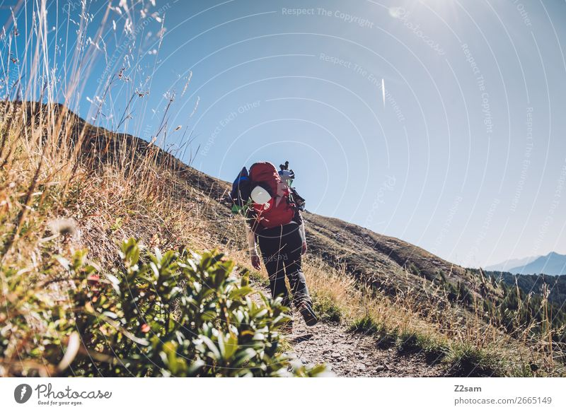 Junge Frau auf Fernwanderweg Freizeit & Hobby Ferien & Urlaub & Reisen wandern Klettern Bergsteigen Jugendliche 18-30 Jahre Erwachsene Natur Landschaft
